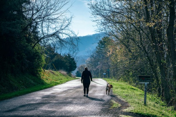 Dame på tur med hunden